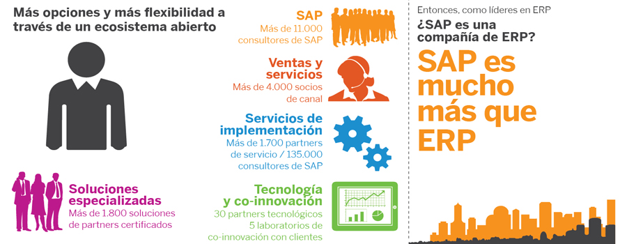 SAP_ERP_ORVITAL